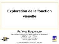 Exploration de la fonction visuelle - Université d'Angers
