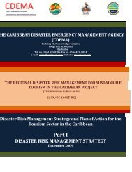 Disaster Risk Management Strategy and Plan of Action - Caribbean ...