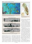 Helicopter magnetic survey conducted to locate wells - Page 3