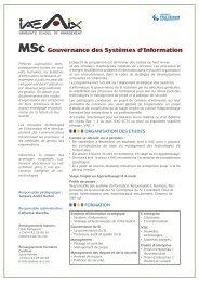 MSc Gouvernance des Systèmes d'Information - IAE Aix-en-Provence