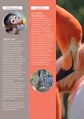 Programme du Jardin des Plantes - Foxoo - Page 6