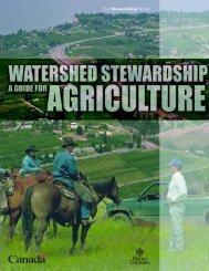 The Stewardship Series