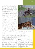 Download - Dobermann Verein Schweiz - Seite 5