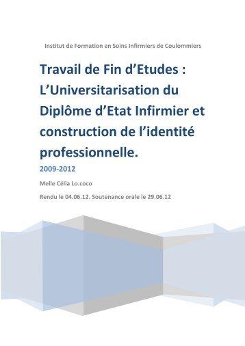 Lire le TFE - PDF - Infirmiers.com