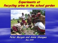 Experiments at Recycling urine in the school garden - SuSanA