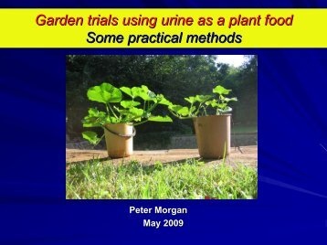 Garden trials using urine as a plant food Some practical ... - SuSanA