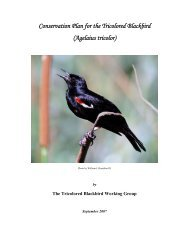 Conservation Plan for the Tricolored Blackbird - U.S. Fish and ...