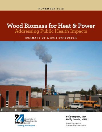 Wood Biomass for Heat & Power: Addressing Public Health Impacts