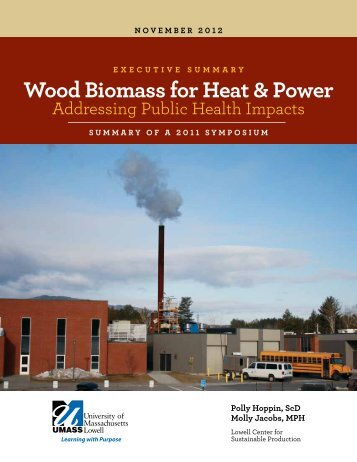 Download PDF - Lowell Center for Sustainable Production