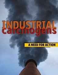 Industrial Carcinogens: A Need for Action - Lowell Center for ...
