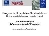 Presentación introductoria por Catherine Galligan - Lowell Center ...