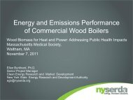 Energy and Emissions Performance of Commercial Wood Boilers