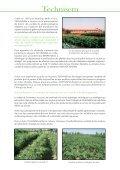 planning de semis oignons en conditions tropicales ... - FIDAfrique - Page 2