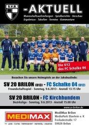 11. Ausgabe vom 09.06.2013 (PDF 7,42MB) - SV 20 Brilon