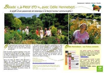 Le jardin A Fleur d'O - Comité Régional Tourisme de Picardie