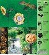 globo katalog 2006 1-35:Layout 1 - art JGS - Page 5