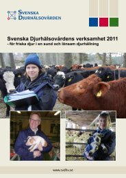 Svenska Djurhälsovårdens verksamhet 2011 - för friska djur i en ...