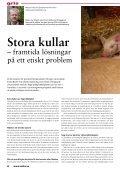 Stora kullar - Svenska Djurhälsovården - Page 4