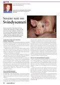 Stora kullar - Svenska Djurhälsovården - Page 6