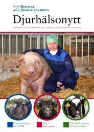 Tidningen Djurhälsonytt - Svenska Djurhälsovården