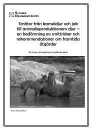 Läs mer - Svenska Djurhälsovården