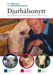 Lunginflammation hos kalv - Svenska Djurhälsovården