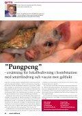 Lunginflammation hos kalv - Svenska Djurhälsovården - Page 4