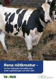Rena nötkreatur - - Svenska Djurhälsovården