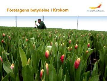 Företagens betydelse i Krokoms kommun - Svenskt Näringsliv