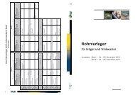 Flyer RV 2013.indd - SVGW