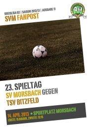 Fanpost 2013/11 SVM - TSV Bitzfeld