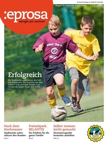 PDF-Download (3,9 MB) - Stadtwerke Döbeln