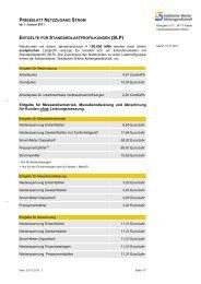 Entgelte der Netznutzung ab 01.01.2011.pdf - Städtische Werke AG