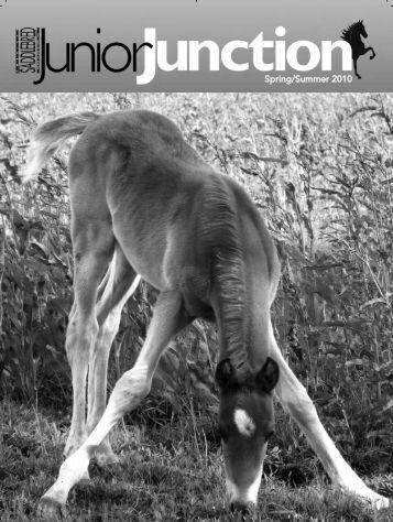 Spring/Summer 2010 - American Saddlebred Horse Association