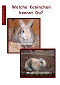 Ich will ein Kaninchen - Sweetrabbits.de - Seite 2