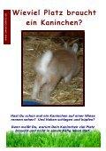 Ich will ein Kaninchen - Sweetrabbits.de - Seite 5
