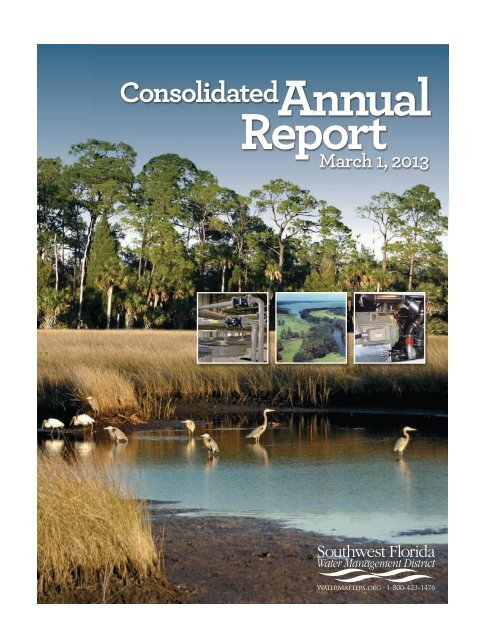 2013 Consolidated Annual Report - Southwest Florida Water ...