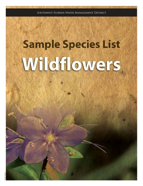 wildflowers - Southwest Florida Water Management District