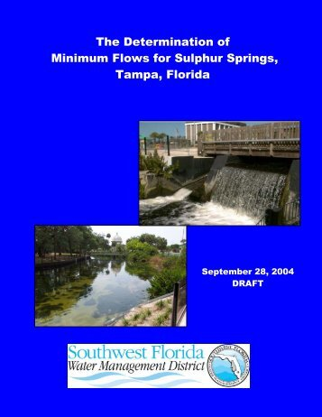 The Determination of Minimum Flows for Sulphur Springs, Tampa
