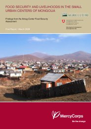 food security and livelihoods in the small urban centers of mongolia