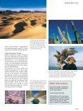 Leben an der Grenze des Lebens - Seite 4