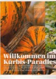 zum Artikel - Süd & West Steiermark
