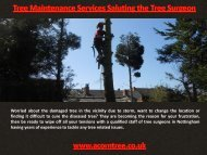 Tree Maintenance Services Saluting the Tree Surgeon
