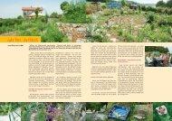 zum iMAG Artikel - Garten Antana
