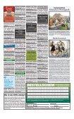 Der gröSSte KLEINANZEIGENmarktvon Sylt - Sylter Spiegel - Page 3