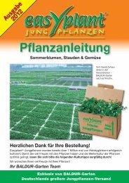 Pflegetipps für Stauden & Gemüse - BALDUR-Garten