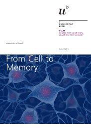 Information brochure (pdf, 1.0 MB) - CCLM