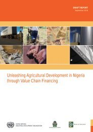 Unleashing Agricultural Development in Nigeria ... - Access Bank