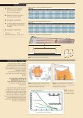 Infrarotstrahler CIR - Systec Therm AG - Page 2