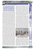 Lidércfény Amatőr Kulturális Folyóirat III. évfolyam 7. szám - Page 3